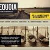 Шаблон Tequoia для CMS Joomla от Прочие